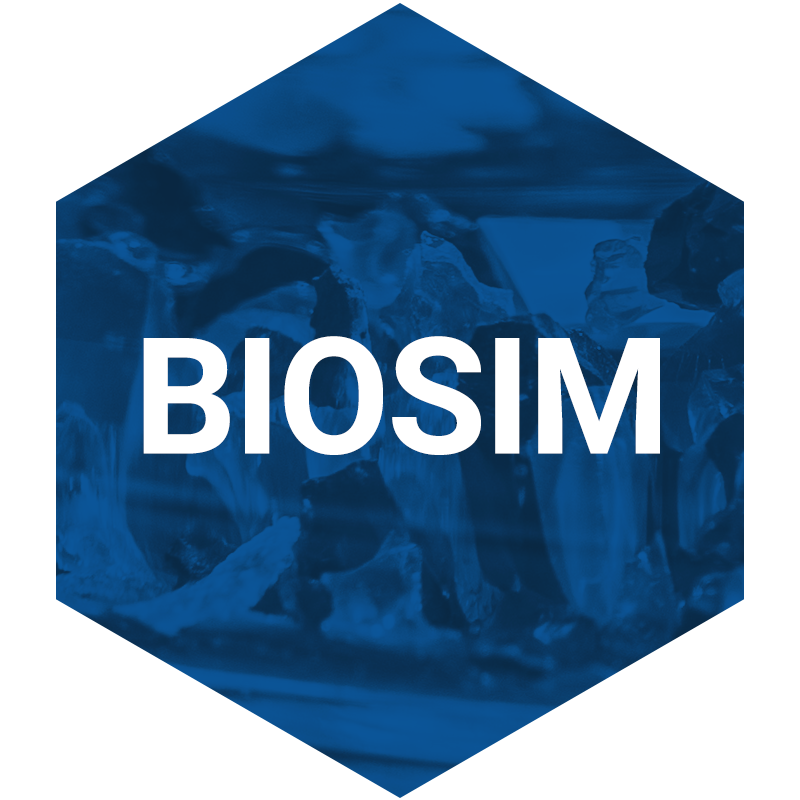 biosim dds diagnostic